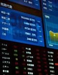 株主・株式関連情報
